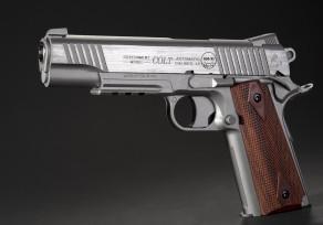 Colt Rail Gun Stainless