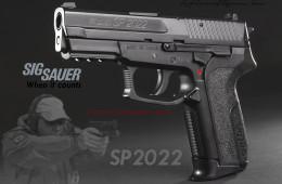 sig-sp-2022(1).jpg
